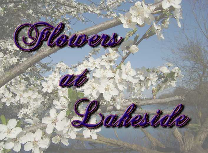 Flowers at Lakeside Logo PS Small