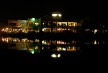 Desert Shores at Night (7)
