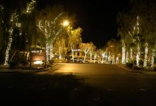 Desert Shores at Night (12)
